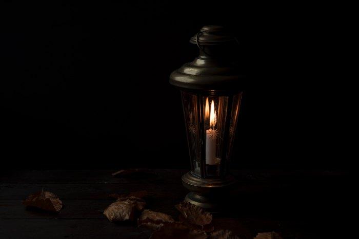 1lamplight:joanna-kosinska-392324-unsplash